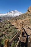 Teide wulkan Obrazy Royalty Free