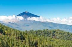 teidetenerife för el spain vulkan Arkivfoton