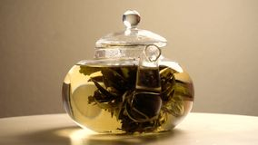 Teiera con tè verde che fila intorno stock footage