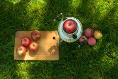 Teiera d'acciaio della samovar rustica sul servire fresco del prato inglese di estate della molla con il bordo di legno e la mela immagini stock libere da diritti