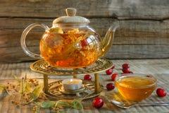 Teiera di vetro con tè saporito caldo con il limone, erbe, Lemo giallo Immagine Stock