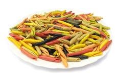 Teigwaren italienisches gargollini mit Gemüse und Gewürz Lizenzfreies Stockfoto