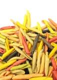 Teigwaren italienisches gargollini mit Gemüse und Gewürz Lizenzfreies Stockbild