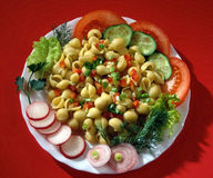 Teigwaren mit Tomaten? Lizenzfreies Stockfoto