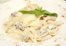 Teigwaren-weiße Muschel-Soße Lizenzfreies Stockfoto