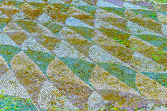 Teil der alten römischen Mosaikfußböden Überlebens an den alten römischen Bädern von Caracalla (Thermae Antoninianae) Lizenzfreie Stockfotografie