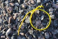 Teil des Frühlinges auf Steinhintergrund Stockfoto