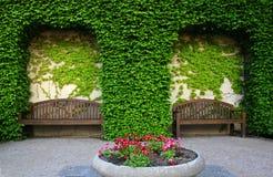 Teil des grünen Gartens stockfotografie