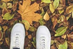 Teil des Körperleute-Herbstkonzeptes weiße Turnschuhe im Park lizenzfreies stockbild