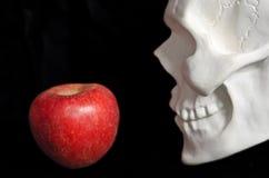 Teil des menschlichen Schädels des weißen Gipses und ein roter Apfel auf einem Schwarzen Lizenzfreie Stockfotografie