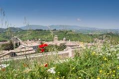 Teil des Panoramas von Albornoziana-Schloss mit Blumen im Th stockfoto