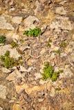 Teil einer Steinwand Hintergrund oder Beschaffenheit Stockfoto