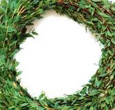 Teil eines Wreath Lizenzfreies Stockbild