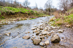 Teil von trockenem Fluss im Wald während des Frühlinges Stockfotos