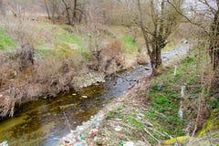 Teil von trockenem Fluss im Wald während des Frühlinges Lizenzfreie Stockfotografie