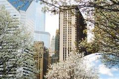Teil Wolken-Tor- und Chicago-Skyline am 23. April 2015 in Chicago, Illinois Wolken-Tor ist die Grafik von Anish Kapoor Stockbilder