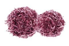 Teilen von Krebszellen lizenzfreie abbildung