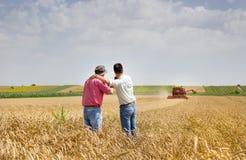 Teilhaber auf Weizenfeld Lizenzfreies Stockfoto