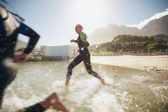 Teilnehmer, die in das Wasser für Anfang eines Triathlon laufen stockfotografie
