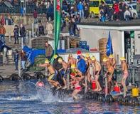 Teilnehmer Zürichs Samichlaus-Schwimmen, die in das Wasser springen Lizenzfreie Stockbilder