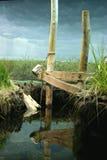 Teils gefälschter Teich Stockfotografie