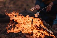 teilweise Ansicht der Nahaufnahme von den Reisenden, die Eibische kochen stockfotografie