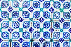 Teja azul turca Imágenes de archivo libres de regalías