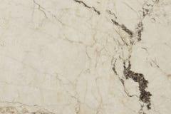 Teja de mármol con el modelo natural Imagenes de archivo