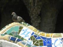 Teja de mosaico de cristal multicolora Fotos de archivo libres de regalías