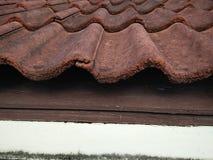 Teja de tejado verde Fotos de archivo libres de regalías
