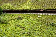 Tejado asiático verde Foto de archivo