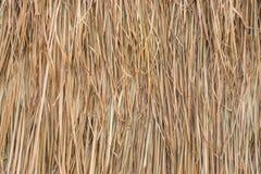 Tejado cubierto con paja hecho de las hojas de la hierba Imagen de archivo libre de regalías