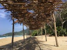 Tejado de la palma de la playa Imagen de archivo libre de regalías