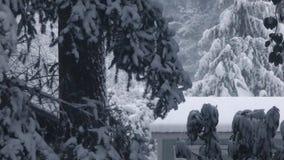 Tejado de la vertiente del jardín en nevadas pesadas por tarde del invierno almacen de video