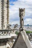 Tejado de Notre Dame de Paris imagen de archivo