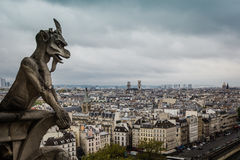 Tejado del Notre-Dame de Paris imagen de archivo