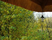 Tejado del vintage y árboles coloridos del otoño en el fondo fotos de archivo libres de regalías