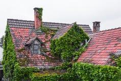 Tejado overgrown de una casa vieja Foto de archivo libre de regalías