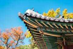 Tejado tradicional coreano del palacio de Changgyeonggung con el arce del otoño en Seúl, Corea imágenes de archivo libres de regalías