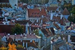 Tejados de Tallinn Estonia Imagen de archivo