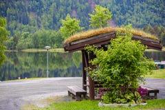 Tejados típicos de la hierba de Noruega imagen de archivo libre de regalías