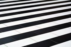 Tejas blancos y negros en el piso Imagen de archivo libre de regalías