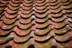 Tejas de sección en S en un tejado Imagen de archivo libre de regalías