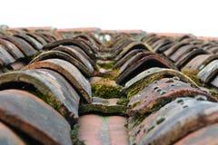 Tejas de tejado de la terracota en sol bajo Foto de archivo