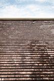 Tejas de tejado viejas de la arcilla con el molde y las algas fotografía de archivo libre de regalías