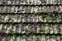 Tejas de tejado viejas de la choza Fotos de archivo libres de regalías