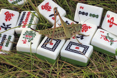 Tejas del saltamontes y del mahjong Fotos de archivo libres de regalías