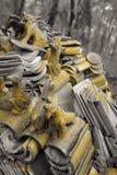 Tejas del templo Foto de archivo libre de regalías