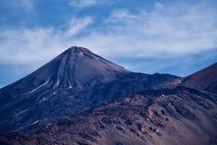 Tejde di Tenerife fotografie stock
