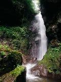 Tejomoyo瀑布 库存照片